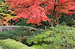Shojo-en Zen Garden, Nikko, Central Honshu (Chubu), Japan, Asia    Stock Photo - Premium Rights-Managed, Artist: Robert Harding Images, Code: 841-02718786