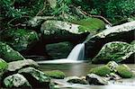 Cascade, Great Smoky Mountains National Park, UNESCO World Heritage Site, Tennessee, United States of America, North America    Stock Photo - Premium Rights-Managed, Artist: Robert Harding Images, Code: 841-02719857