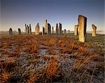 Callanish (Callanais) Stone Circle dating from Neolithic period between 3000 and 1500 BC, at dawn, Isle of Lewis, Outer Hebrides, Scotland, United Kingdom, Europe    Stock Photo - Premium Rights-Managed, Artist: Robert Harding Images, Code: 841-02720447