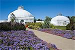 Botanical Gardens, Buffalo, New York State, United States of America, North America    Stock Photo - Premium Rights-Managed, Artist: Robert Harding Images, Code: 841-02721149