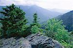 View from the Alum Cave Bluffs trail in Great Smoky Mountains National Park, UNESCO World Heritage Site, Tennessee, United States of America (U.S.A.), North America    Stock Photo - Premium Rights-Managed, Artist: Robert Harding Images, Code: 841-02722912
