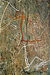 Painting of dancing figures at Nourlangie Rock, sacred aboriginal shelter and rock art site in the north east of Kakadu National Park, UNESCO World Heritage Site, Northern Territory, Australia, Pacific    Stock Photo - Premium Rights-Managed, Artist: Robert Harding Images, Code: 841-02722976