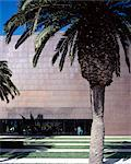 de Young Museum, San Francisco, 2005. Entrance. Architect: Herzog and de Meuron    Stock Photo - Premium Rights-Managed, Artist: Arcaid, Code: 845-02725634