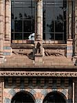 Natural History Museum, Kensington, London. Exterior detail.    Stock Photo - Premium Rights-Managed, Artist: Arcaid, Code: 845-02725966