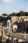 Forum romanum Stock Photo - Premium Royalty-Free, Artist: Graham French, Code: 614-02740215