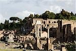 Forum romanum Stock Photo - Premium Royalty-Free, Artist: Bryan Reinhart, Code: 614-02740217