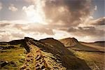 Hadrian's Wall, Northumberland, England, United Kingdom    Stock Photo - Premium Rights-Managed, Artist: Tim Hurst, Code: 700-02754690