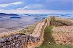 Hadrian's Wall, Northumberland, England, United Kingdom Stock Photo - Premium Rights-Managed, Artist: Tim Hurst, Code: 700-02754691