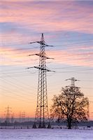 Old Willow Trees by High Voltage Hydro Tower at Sunrise, Siegburg, North Rhine-Westphalia, Germany    Stock Photo - Premium Rights-Managednull, Code: 700-02756698