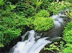 Waterfalls at Nagano Prefecture ,Japan
