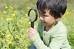 Japanese boy looking at flowers with magnifying glass Stock Photo - Premium Royalty-Free, Artist: Masterfile, Code: 622-02758473