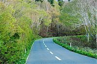 forward - Road Passing Through Beech Forest Stock Photo - Premium Royalty-Freenull, Code: 622-02758724