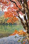 Scenic View of Mountain and Lake, Tochigi Prefecture, Japan Stock Photo - Premium Royalty-Free, Artist: JTB Photo, Code: 622-02759245