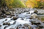 River Passing Through Nakatsugawa Ravine, Japan Stock Photo - Premium Royalty-Free, Artist: JTB Photo, Code: 622-02759277