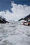 Tourists at Columbia Ice Field in Canada Stock Photo - Premium Royalty-Free, Artist: JTB Photo, Code: 622-02759705