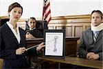 Female lawyer pointing at an exhibit in front of a judge and a victim Stock Photo - Premium Royalty-Freenull, Code: 640-02764736