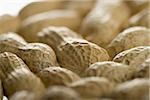 Close-up of peanuts Stock Photo - Premium Royalty-Free, Artist: Eyecandy Pro, Code: 640-02766812