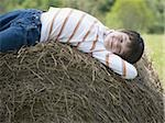 Portrait of a boy lying on a hay bale Stock Photo - Premium Royalty-Free, Artist: Eyecandy Pro, Code: 640-02767226