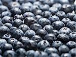Close-up of blueberries Stock Photo - Premium Royalty-Free, Artist: Aflo Relax               , Code: 640-02767399