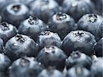 Close-up of blueberries Stock Photo - Premium Royalty-Free, Artist: Flowerphotos, Code: 640-02767400