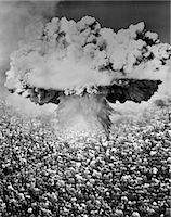 1950s 1960s ATOMIC BOMB SYMBOLIC MONTAGE MUSHROOM CLOUD OVER A VERY LARGE CROWD OF PEOPLE FACING THE EXPLOSION    Stock Photo - Premium Rights-Managednull, Code: 846-02791724