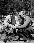 1930s 1940s 2 ADULT MEN FATHER & SON KNEELING IN GARDEN LOOKING AT FLOWERING SHRUB