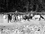 1930s TWO COWBOYS HERDING HORSES THROUGH ROCKY STREAM MUSTANGS WILD HORSES ROUND UP BRAZEAU RIVER ALBERTA CANADA