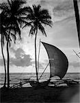1920s 1930s SINGLE CATAMARAN ON TROPICAL BEACH AT SUNSET PALM TREES SRI LANKA
