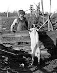 1920s 1930s WHITE HOG PIG STANDING UP AGAINST FENCE TO GREET FARMER AND BOY