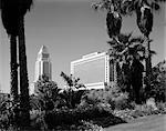 1960s CITY HALL POST OFFICE COURTHOUSE LOS ANGELES PALM TREES IN FOREGROUND CITY GOVERNMENT BUILDING MACARTHUR PARK