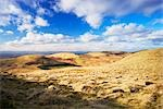 Pentland Hills, Midlothian, Scotland    Stock Photo - Premium Rights-Managed, Artist: Tim Hurst, Code: 700-02798157
