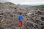 Young boy looking out at cleared landscape of fallen trees Stock Photo - Premium Royalty-Freenull, Code: 673-02801430