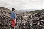 Young boy looking out at cleared landscape of fallen trees Stock Photo - Premium Royalty-Freenull, Code: 673-02801432