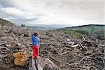 Young boy looking out at cleared landscape of fallen trees Stock Photo - Premium Royalty-Freenull, Code: 673-02801433