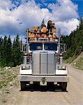 Logging truck, British Columbia, Canada, North America    Stock Photo - Premium Rights-Managed, Artist: Robert Harding Images, Code: 841-02824656