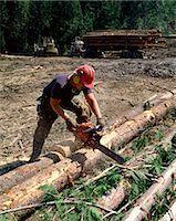 Logging in British Columbia, Canada, North America    Stock Photo - Premium Rights-Managednull, Code: 841-02824659
