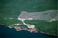 Logged area and surrounding forest from the air, British Columbia, Canada, North America    Stock Photo - Premium Rights-Managednull, Code: 841-02824680