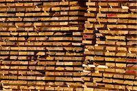 Timber, British Columbia, Canada, North America    Stock Photo - Premium Rights-Managednull, Code: 841-02824963