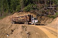 Logging truck, British Columbia, Canada, North America    Stock Photo - Premium Rights-Managednull, Code: 841-02824969