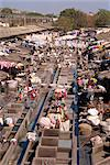 Dhobi or laundry ghats, Mumbai (Bombay), India, Asia    Stock Photo - Premium Rights-Managed, Artist: Robert Harding Images, Code: 841-02830812