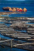 Logs booms on the Campbell River, British Columbia, Canada, North America    Stock Photo - Premium Rights-Managednull, Code: 841-02831035