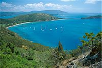 queensland - View over Bauer Bay, South Molle Island, Whitsundays, Queensland, Australia, Pacific    Stock Photo - Premium Rights-Managednull, Code: 841-02831744