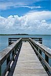 Boardwalk at Lake, Mount Dora, Florida, USA Stock Photo - Premium Royalty-Free, Artist: Elke Esser, Code: 600-02832971