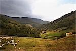 Basque Countryside, Spain Stock Photo - Premium Royalty-Free, Artist: George Simhoni, Code: 600-02834049