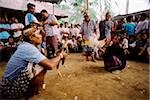 Indonesia, Bali, Cock fight. Stock Photo - Premium Rights-Managed, Artist: Asia Images, Code: 849-02867251