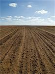 Ploughed Field Ready for Wheat Sowing, Australia Stock Photo - Premium Royalty-Free, Artist: Koolstock, Code: 600-02886657