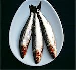 Mackerel Stock Photo - Premium Rights-Managed, Artist: foodanddrinkphotos, Code: 824-02887733