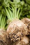 Celeriac Stock Photo - Premium Rights-Managed, Artist: foodanddrinkphotos, Code: 824-02888489