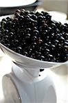 Blackcurrants (Ben Connan),Ben Sarek-Ben Lomond Cross Stock Photo - Premium Rights-Managed, Artist: foodanddrinkphotos, Code: 824-02888651
