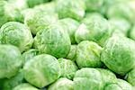 Brussel Sprouts full frame Stock Photo - Premium Rights-Managed, Artist: foodanddrinkphotos, Code: 824-02889507